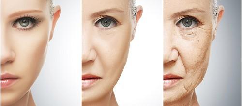 Die Haut – So verändert sie sich im Laufe des Lebens